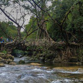 Jingmaham Living Root Bridge in Mawlynnong , Meghalaya
