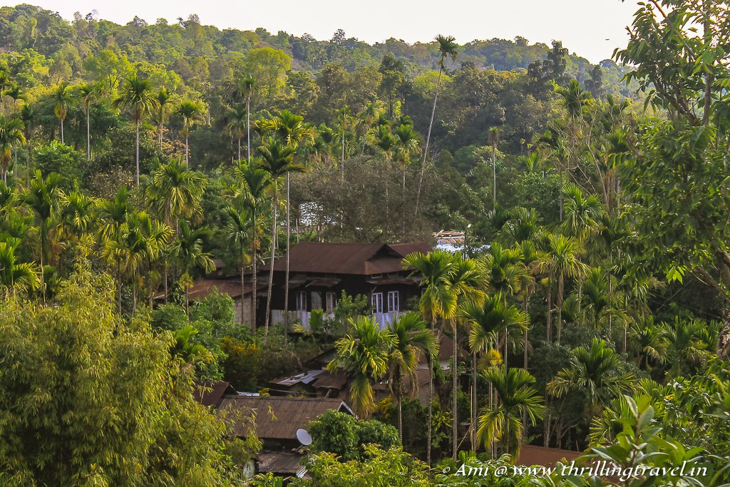 Travel Guide to Mawlynnong - Asia's Cleanest Village