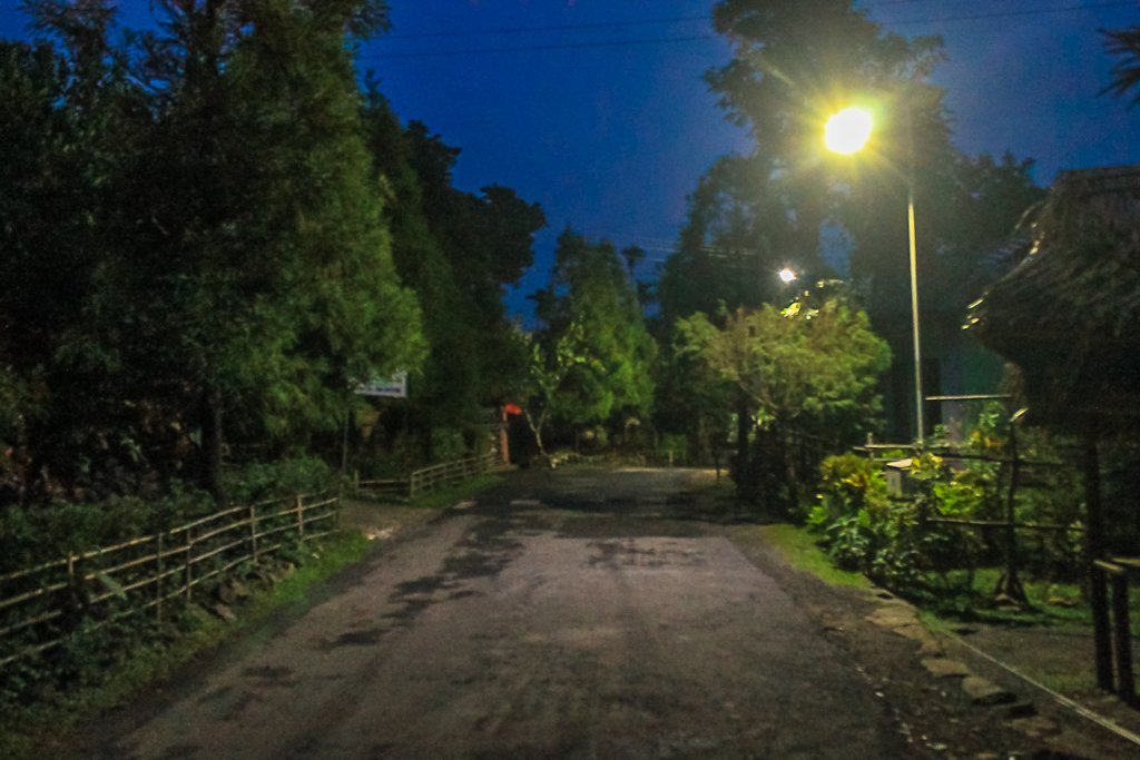 Solar lamps that light up the streets of Mawlynnong