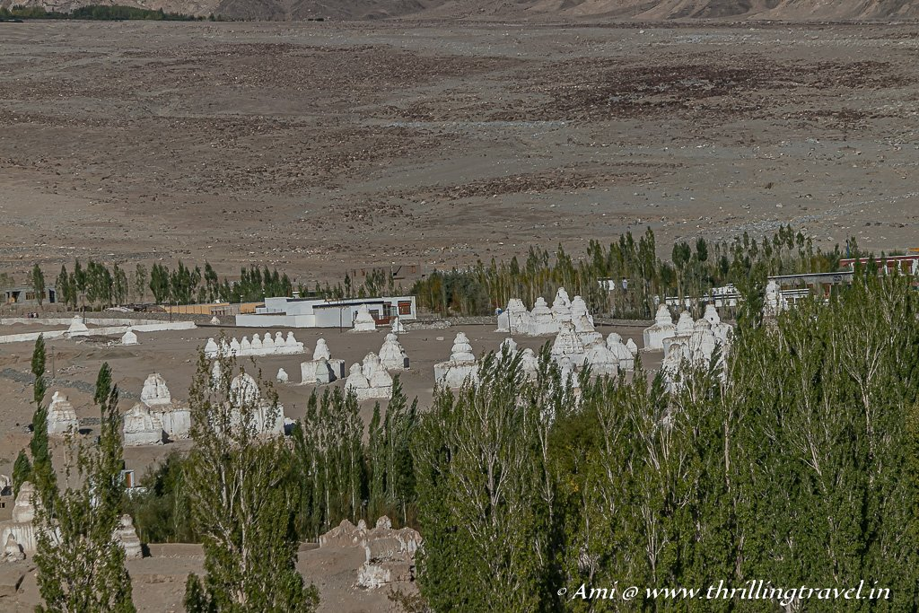 Field of Chortens in Ladakh near Shey