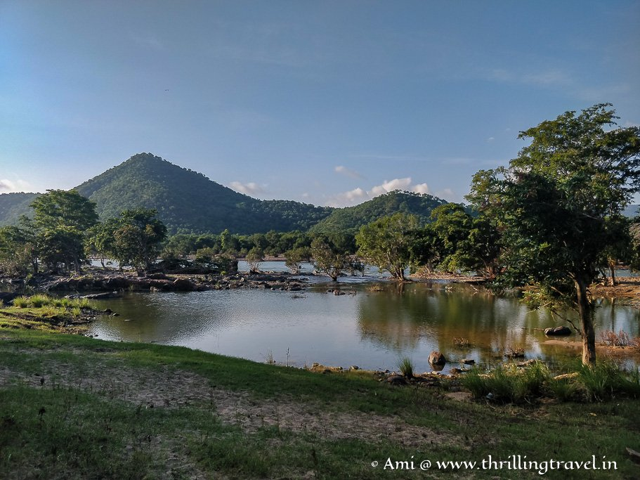 Galibore forest - just 100 km from Bengaluru