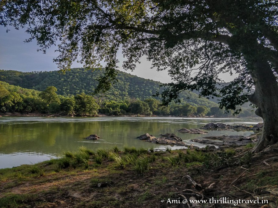 Galibore nature camp - a day trip from Bangalore