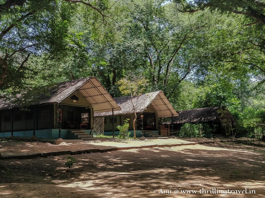 The tented cottages at Galibore Nature Camp