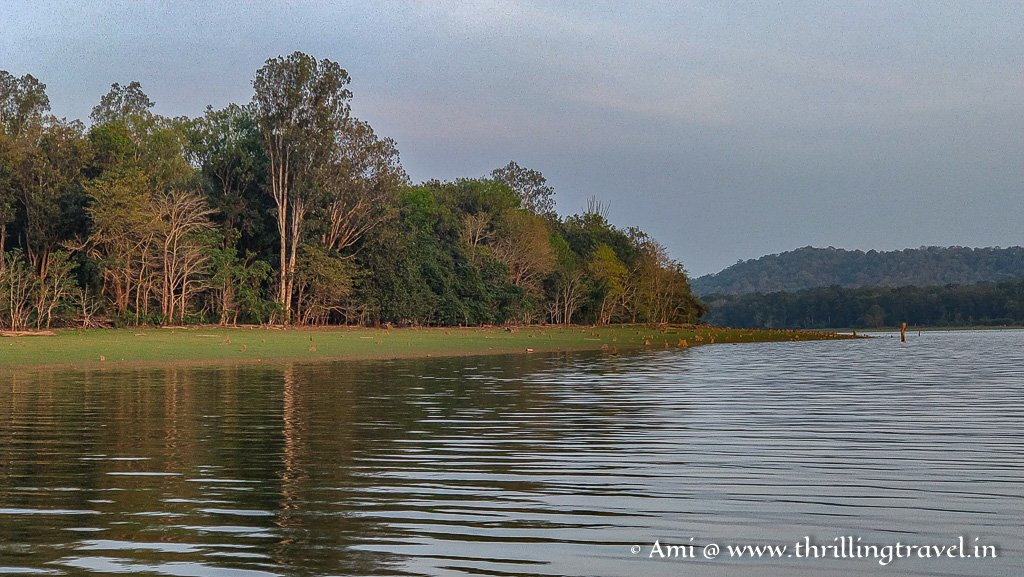 Kabini river that gives this zone of Nagarhole its name