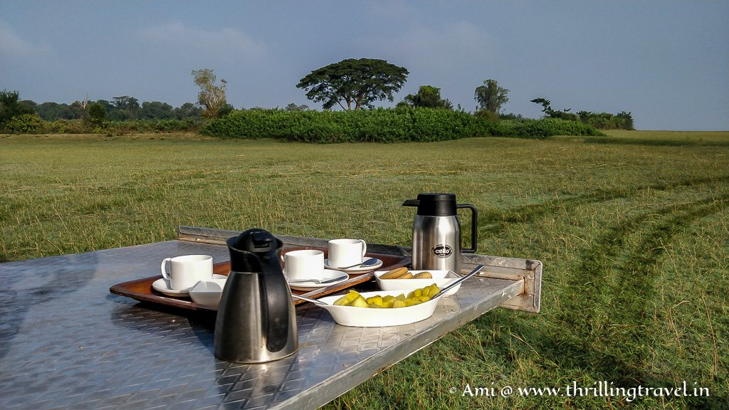 Some quick tea and refreshments for the early nature walkers at Kaav
