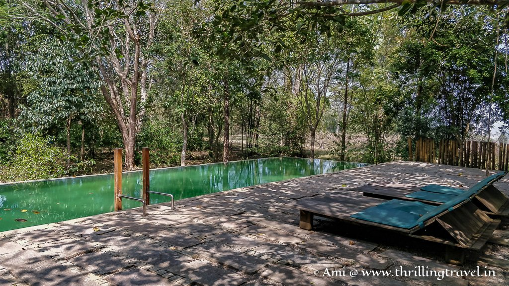 The Swimming Pool at Kaav Safari Lodge in Kabini