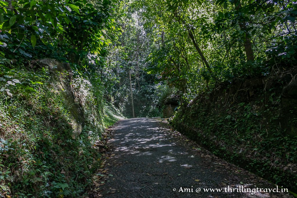 The walk uphill from the parking bay at Edakkal Caves Wayanad