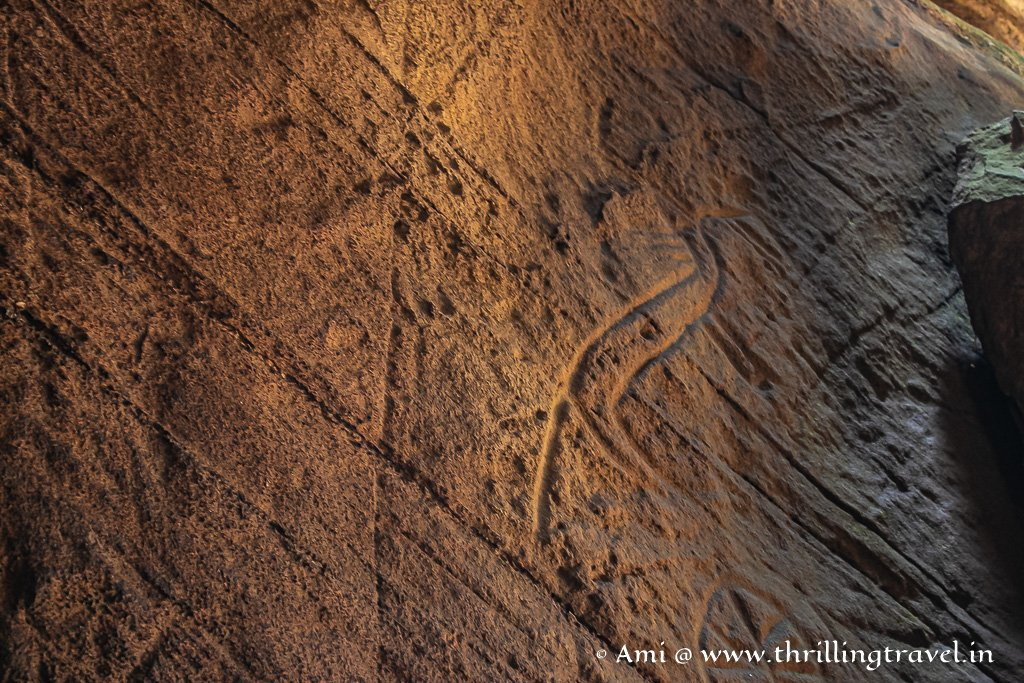 A bird carved onto the walls of Edakkal Caves in Wayanad, Kerala