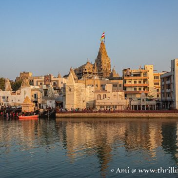 Divine Vibes & Melodious Chants at Shree Dwarkadhish Temple