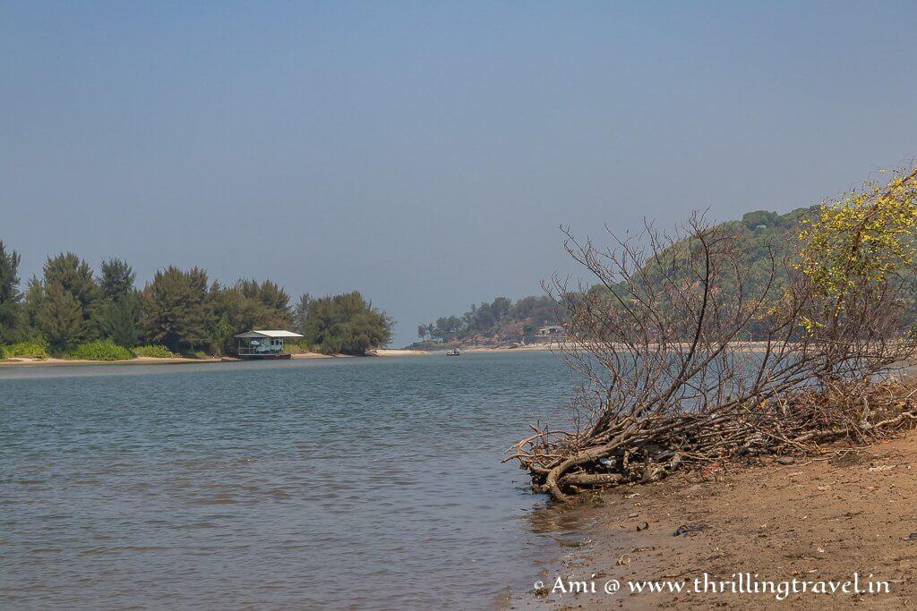 Byndoor backwaters