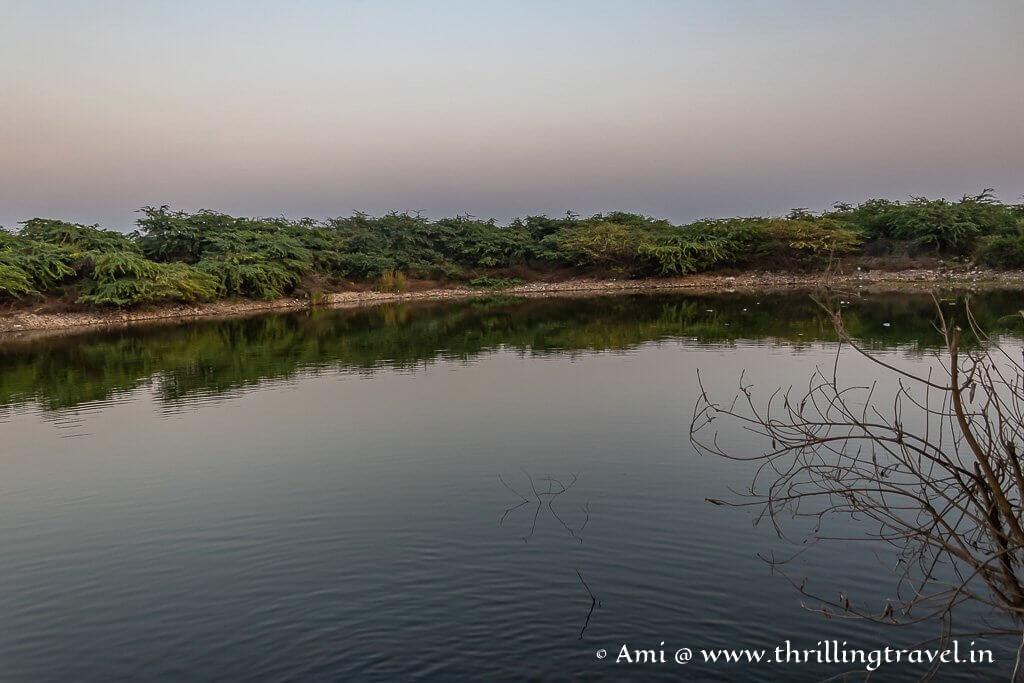 The pond behind Nageshwar Jyotirlinga temple