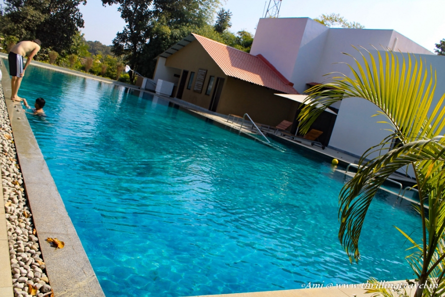 The Gorgeous Swimming Pool at  Club Mahindra Resort Kanha