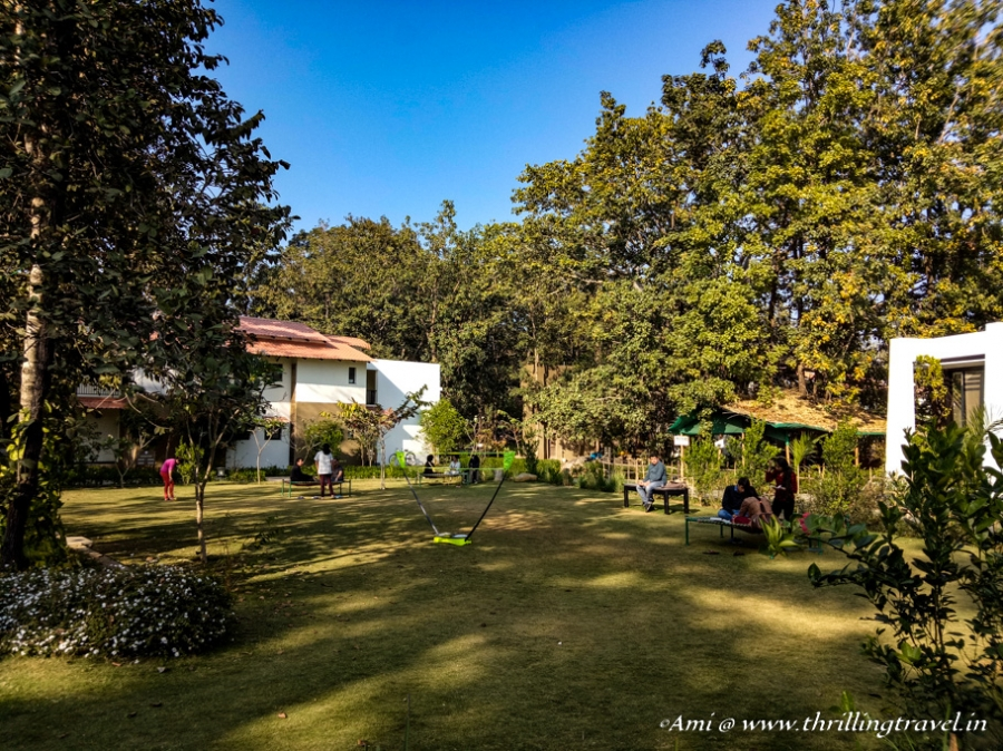 Green lawns of Club Mahindra Resort Kanha